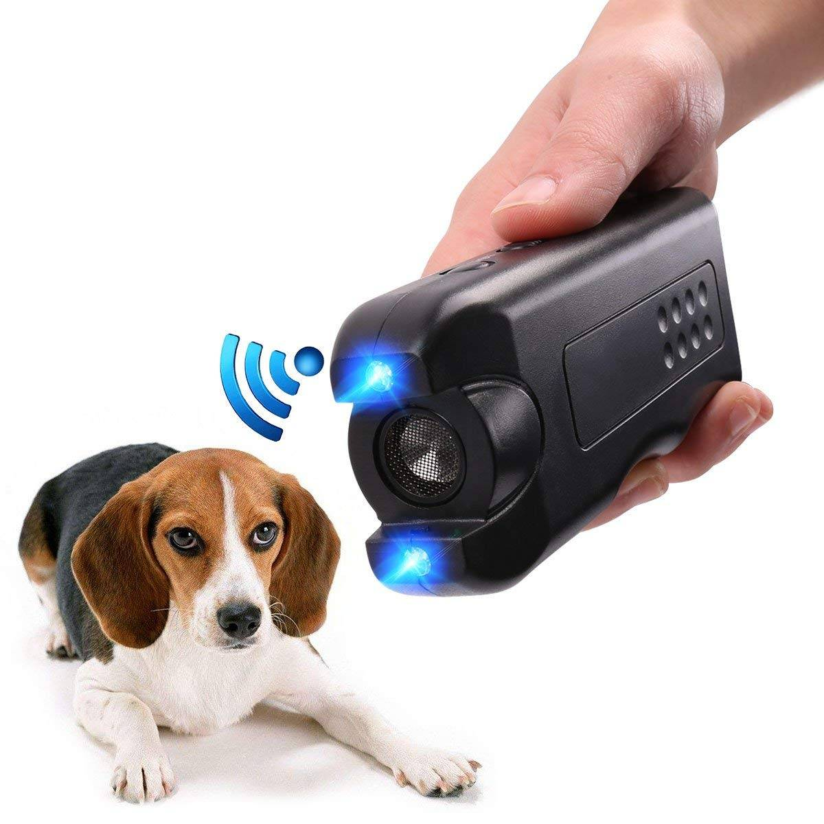 best dog bark control