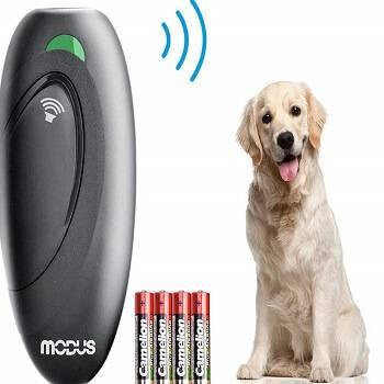 Best Ultrasonic Dog Barking Deterrent (Anti Bark Device