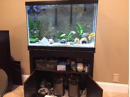best internal aquarium filter