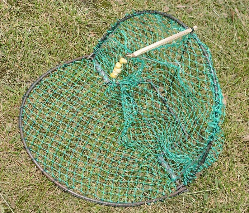 best bird trap